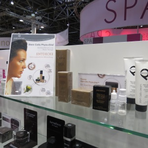 Beauty International 2016 (49)