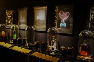 fragrances-bar-2